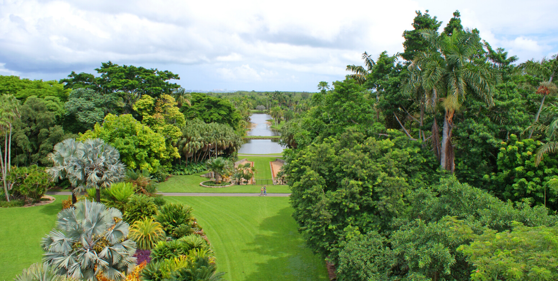 Fairchild Botanical Garden - IGY One Park Miami - 1100x555