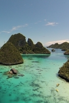 Raja Ampat APS thumb cropped