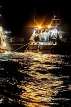 Sea Shepherd France NightTrawlers thumb Tara Lambourne