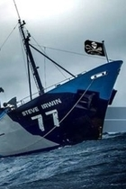 Sea Shepherd Steve Irwin retires 2 002