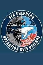 operation reef defence 2